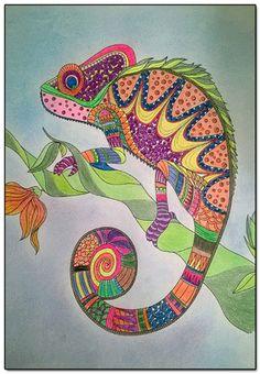 chameleon on a kaleidoscope epub download