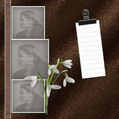 48 shades of brown ebook