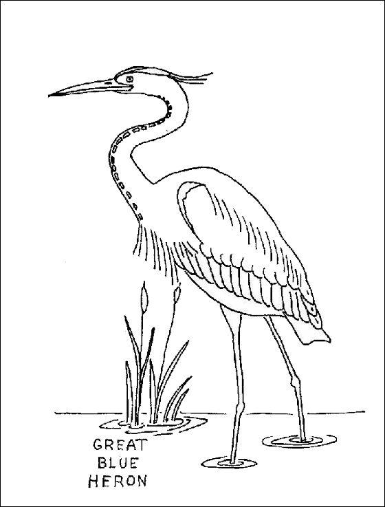 pastures of the blue crane ebook