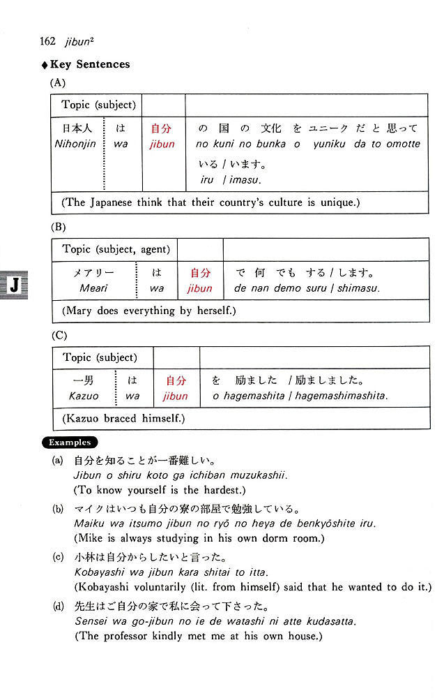 dictionary of basic japanese grammar ebook